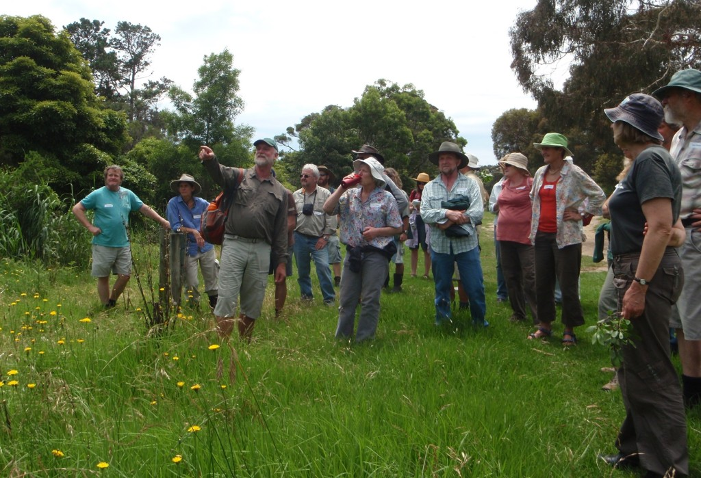 tathra Plant ID Workshop