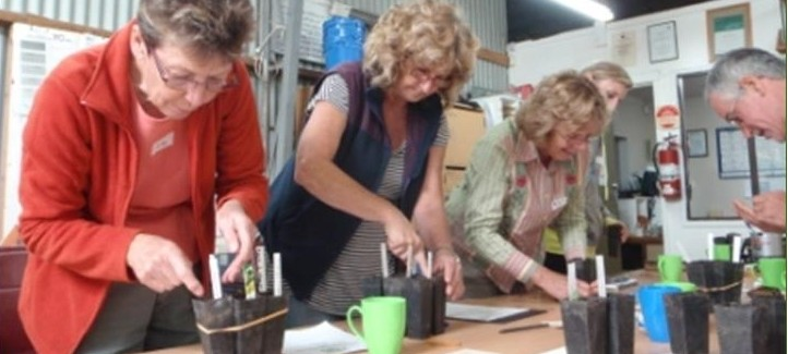 Seed propogation workshop