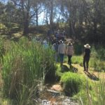 Bemboka River Reserve Field Day